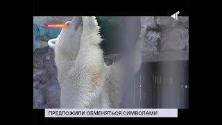 22.08.19. «Новости Северного города» Белого - на панду? Спасите оленя. Поезд в Норильск.