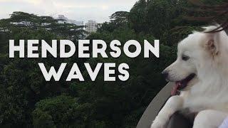 Dog Walk at Henderson Waves Singapore