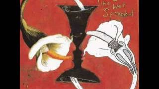 Toad the Wet Sprocket - Begin