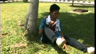 Badul Thailand-bakpo Demo Tokse.DAT