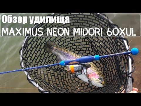 Video youtybe idNvP8_gm-Tp8
