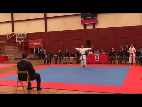 JDN Kata y Kumite Cadete y Junior 201018 Video 9