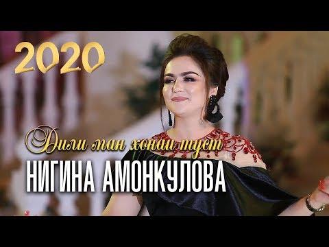 Нигина Амонкулова - Дили ман хонаи туст (Клипхои Точики 2020)