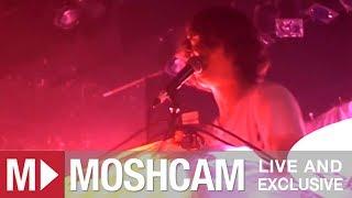 Animal Collective - My Girls | Live in Sydney | Moshcam