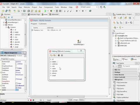 Delphi programming tutorial MySQL connection example