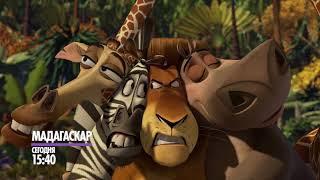 """""""Мадагаскар"""" сегодня на НТК!"""