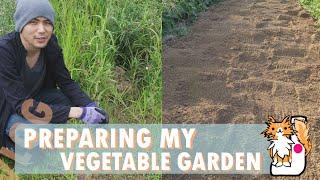 Preparing my Vegetable Garden
