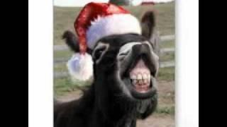 dominick the donkey the italian christmas donkey lyrics sung by - Dominick The Donkey Christmas Song