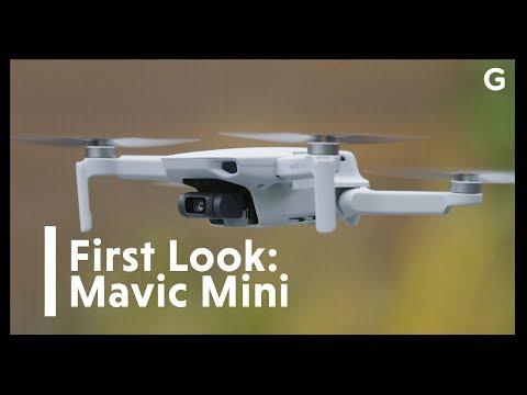 DJI's Mavic Mini Wants To Be The Drone For Everyone