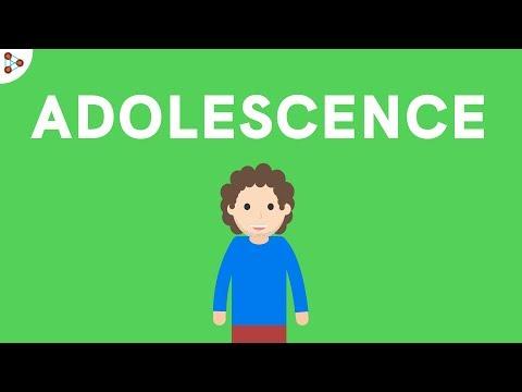 Reaching Adolescence - Puberty - CBSE Class 8