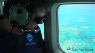 Grande Barreira de Coral perdeu 93% da cor