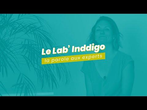 Le Lab' Inddigo #3 — Amélioration des Connaissances des Installations Biomasse sur la qualité de l'air