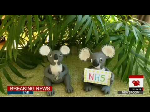 Koalaty Clapping