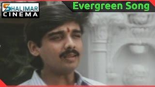 Evergreen Hit Song of the day || Swararaga Ganga Video Song || shalimarcinema || Shlimarcinema