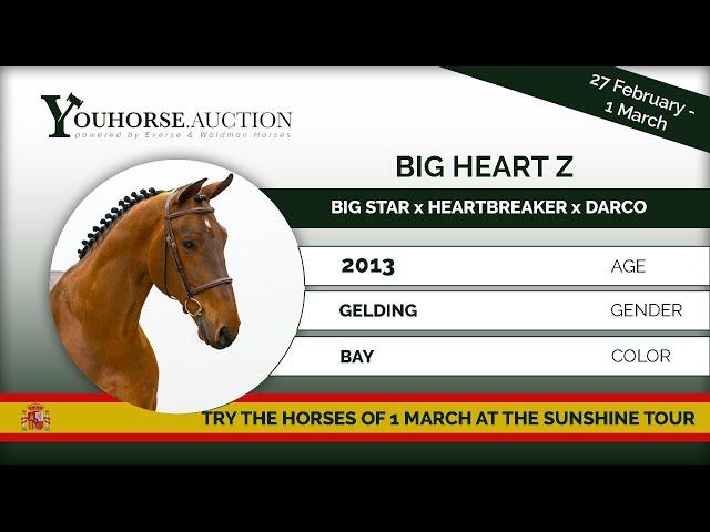 Big Heart Z showing in Spain