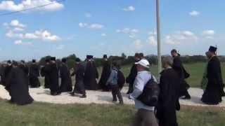 Прибытие Крестного хода на Благовещенское поле