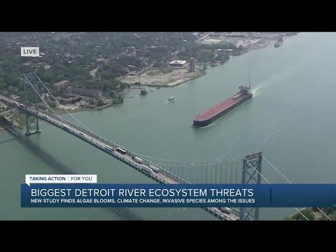 Biggest Detroit River ecosystem threats