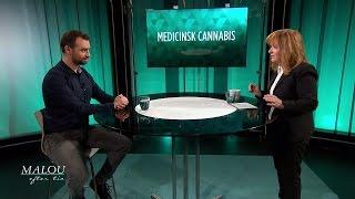Internationell forskning om medicinsk cannabis - Malou Efter tio (TV4)