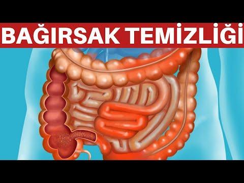 Enterobius vermicularis guidelines