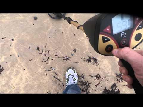 Fisher F2 Metal Detector Wet Beach Sand Test