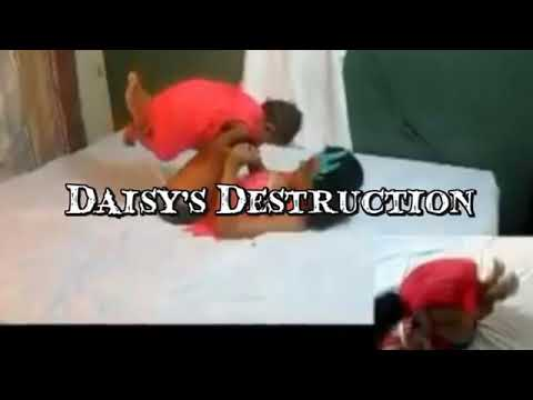 Daisy's Destruction - YouTube