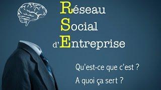 Comprendre les Réseaux Sociaux d'Entreprise