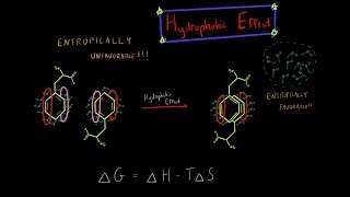 The Hydrophobic Effect and Entropy Biochemistry (EVERYTHING YOU NEED TO KNOW BIOCHEMISTRY)