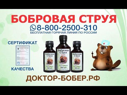 Пиявки для лечения простатита