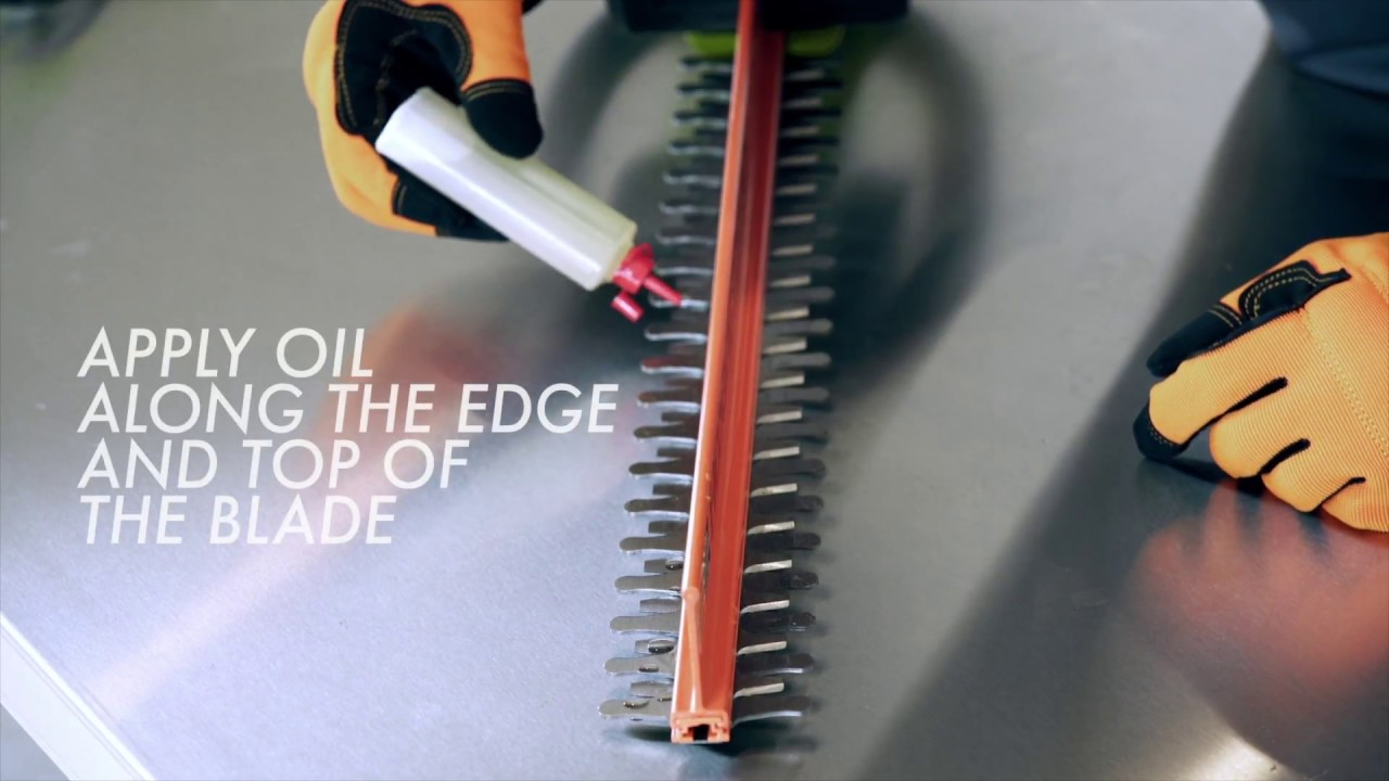 How To Lubricate A Hedge Trimmer Ryobi Landscapes