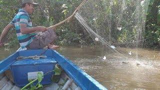 163\Vớt cá thã lưới: Mới vợt đầu là đả biết hôm nay trúng lớn | Săn bắt SÓC TRĂNG |
