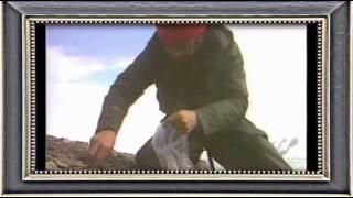 1990 Video Intitucional