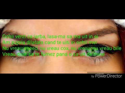Kyst al hindi pentru vedere
