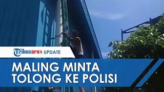 Aksi Kocak Maling di Padang Terjebak di Atap Tak Bisa Turun, Minta Tolong Polisi Ambilkan Tangga