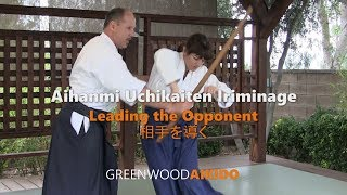 Aihanmi Uchikaiten Iriminage: Leading The Opponent