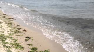 preview picture of video 'Cape Charles Waves'