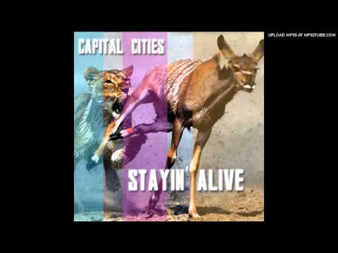 Stayin' Alive (Song) by Capital Cities