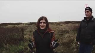Dokumentárny film Životné prostredie - Jedovatý život