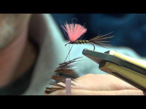 Video un cartone animato su pesca