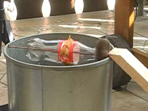 油桶原來是捕鼠器