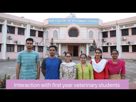 Interaction with first year veterinary students | Problems faced during online classes? |  Vet Visit