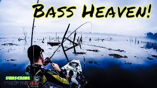 Hobie Kayak fishing on Lake Naconiche with RLM Fishing!