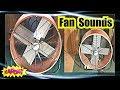 Download Video <span aria-label=