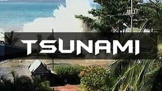 Megadisaster 2004 Indian Ocean Tsunami: Deadliest Earthquake and Tsunami of Modern History