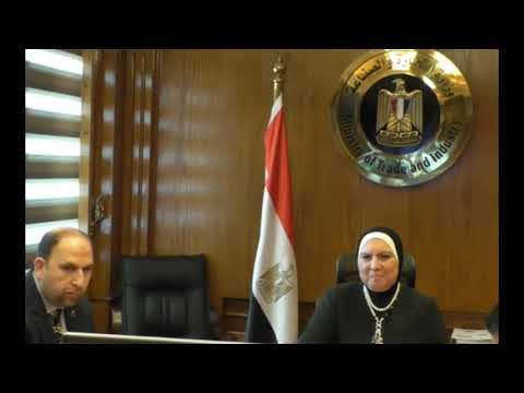 بالفيديو كونفرانس نيفين جامع تشارك بالندوة الافتراضية للجمعية المصرية اللبنانية لرجال الاعمال