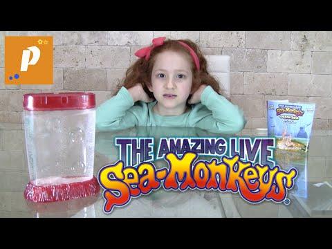 Распаковка необычной посылки с морскими обезьянами гомункул Unboxing sea monkeys морские обезьяны