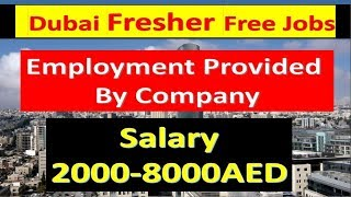 Fresher Jobs In Dubai 2019 Latest Vacancies Apply Now Employment Visa Will Provided