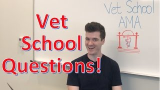 Answering Your Vet School Questions