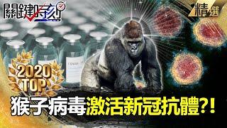 【關鍵時刻】激活新冠病毒抗體?! 「猴子病毒」竟成人類救世主?!