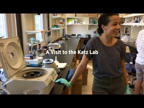 Visit to the Katz Lab
