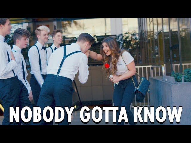 Nobody-gotta-know-why